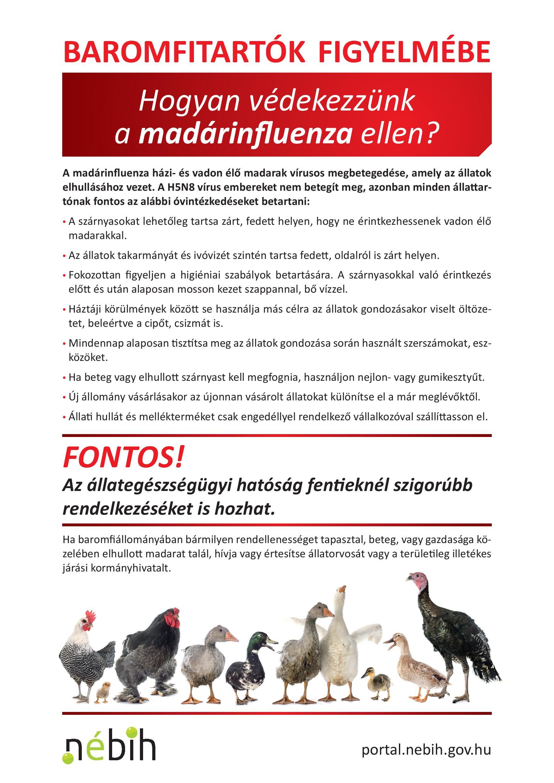 nebih madarinfluenza2021